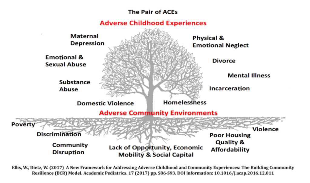 Graphic of tree titled The Pair of ACEs demonstrating adverse community environments at the roots and adverse childhood experiences in the branches